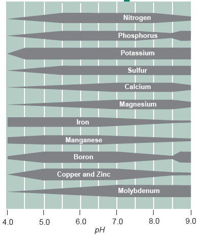 Nutrient Availability pH